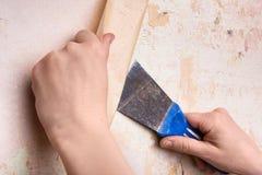 Hände, die Tapete von der Wand entfernen Stockbild