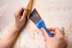Hände, die Tapete von der Wand mit Spachtel entfernen Stockfoto