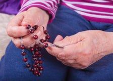 Hände einer älteren Frau, die ein Rosenbeet hält Stockfotos