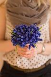 Hände einer jungen Frau, die ein Bündel des schönen Frühlingsblaus hält, blüht Stockfoto