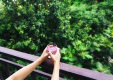 Hände halten rosa Glas und Baumhintergrund stockbild