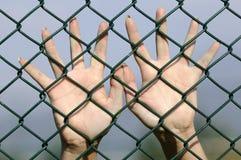 Hände hinter Kettenlink Stockfoto