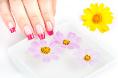 Hände mit der Maniküre, die im Wasser und in den Blumen sich entspannt stockfoto