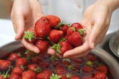 Hände mit Erdbeere Lizenzfreie Stockfotos