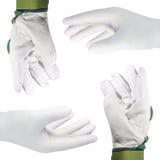 Hände mit Handschuhen, Ausschnitt Stockfotos