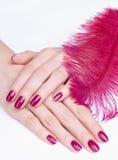 Hände mit rosafarbener Maniküre und Feder Stockfotos