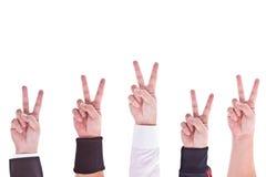 Hände mit Siegzeichen stockfotografie