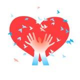 Hände mit Vögeln auf einem Hintergrund von Herzen Stockfoto