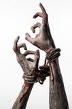 Hände springen, blutige Hände, Schlamm, Seil, auf einem weißen Hintergrund, lokalisiert und entführen, Zombie, Dämon Lizenzfreies Stockbild