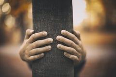 Hände um Baum Stockfotografie