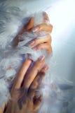 Hände und Boa Lizenzfreies Stockbild