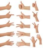 Hände und Daumen stockfoto