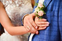 Hände und Ringe auf der Heirat blaß - Rosarose Boutonniere, Abschluss oben stockfotografie