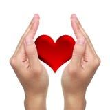 Hände und rotes Herz Stockbilder