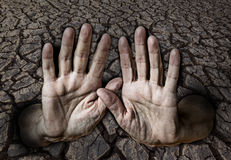 Hände und trockene Erde Stockbild
