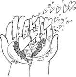 Hände voll von Fliegenherzen Stockfotos