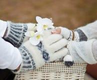 Hände von Liebhabern mit einer Orchidee stockfotos