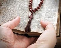 Hände, welche die Bibel anhalten und mit einem Rosenbeet beten stockfotografie