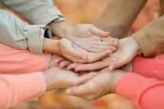 Hände zusammen gegen Blätter Stockfotografie