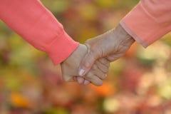 Hände zusammen gegen Blätter Stockbilder
