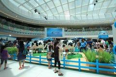 Händelse 2015 för Hong Kong Dutch Lady Pure djurhållninglantgård arkivfoton
