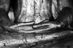 Händer av Buddhabilden Royaltyfri Bild