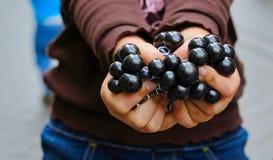 Händer av en flicka som rymmer marmor fotografering för bildbyråer