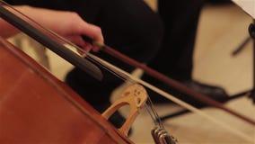 Händer av en musiker som spelar på en kontrabas, tappning, basfiolspelare, räcker att spela kontrabasmusikinstrumentet stock video