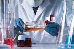 Händer av flaskan för kultur för silkespapper för innehav för labbtekniker i genen arkivfoton