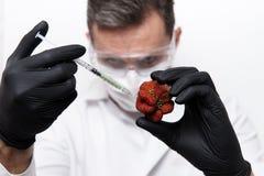 Händer av forskaren i svarta handskar med en injektionsspruta Arkivbild