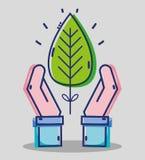 Händer för affärsman med det tropiska bladet Arkivfoto