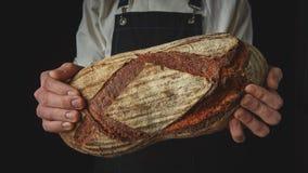 Händer för bagare` s rymmer ett ovalt bröd Royaltyfria Foton