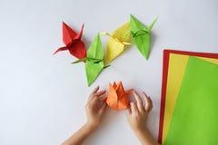 Händer för barn` s gör origami från kulört papper på vit bakgrund Kurs av origami Royaltyfri Foto