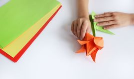 Händer för barn` s gör origami från kulört papper på vit bakgrund Kurs av origami Fotografering för Bildbyråer