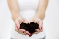 Händer för kvinna` som s rymmer den gröna lilla växten i jord för begreppstillväxt för bakgrund 3d den isolerade illustrationen f Arkivbild