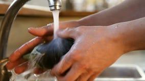 Händer för man` s tvättar aubergine under rinnande vatten stock video
