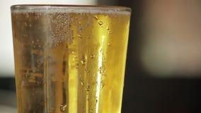 Händer flyttar sig runt om mousserande öl lager videofilmer