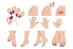Händer fot och spikar manikyr stock illustrationer