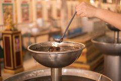 Händer häller olja in i lampan, trogen buddism royaltyfria foton
