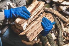 Händer i handskar rymmer träjournaler fotografering för bildbyråer