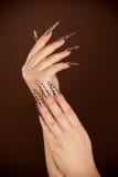 Händer med den långa fingernailen och den härliga manicuren arkivbilder