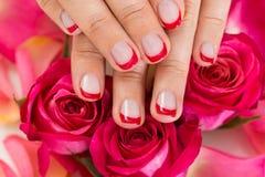 Händer med Manicured spikar fernissa som förläggas på rosor Arkivbilder