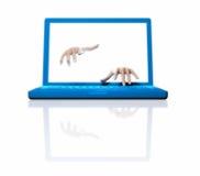 Händer och bärbar dator royaltyfri fotografi