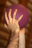 Händer och purpur boll royaltyfri bild