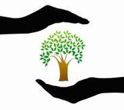 Händer och trädsymbol Royaltyfri Bild