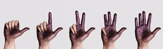 Händer som räknar från en till fem Fotografering för Bildbyråer