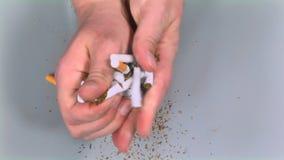 Händer som river många cigaretter stock video