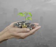 Händer som rymmer det nya gröna trädet som växer på mynt över förorening c Royaltyfria Foton