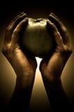 Händer som rymmer en Apple Arkivbilder