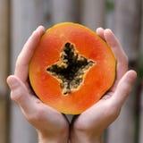 Händer som rymmer en papayaskiva, mans händer, fyrkanten, vändkretsfrukt, händer, Boca Chica, Dominikanska republiken som är kari Arkivfoto